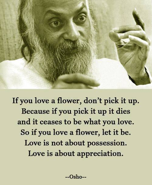 Osho - If you love a flower, don't pick it up. Because if you pick it up it dies and it ceases to be what you love. So if you love a flower, let it be