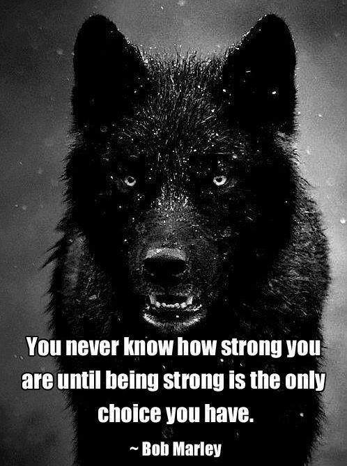 Bob Marley - You never know how strong you are until..