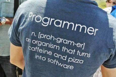 Definition of Programmer