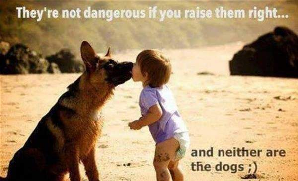 Dog and Child -  They're not dangerous if you raise them right...