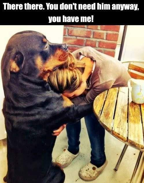 Dog comforts girl. There there..