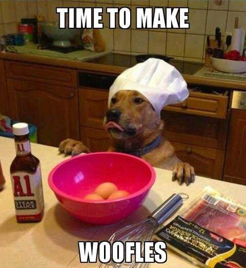 Dog - Time to make woofles!
