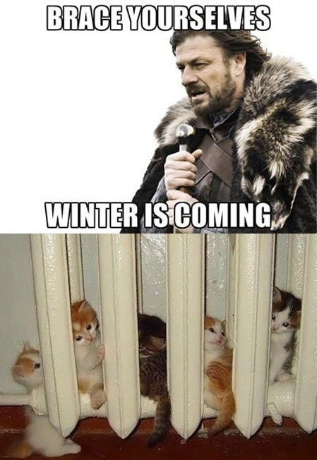 Brace your selfe Winter is Coming - Game of Thrones - 9buz