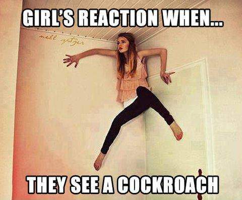 Girl's reaction when they see a cockroach