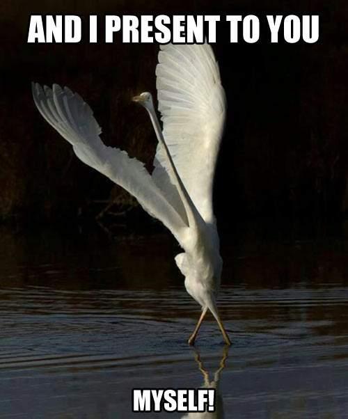 Heron - And I present to you Myself!