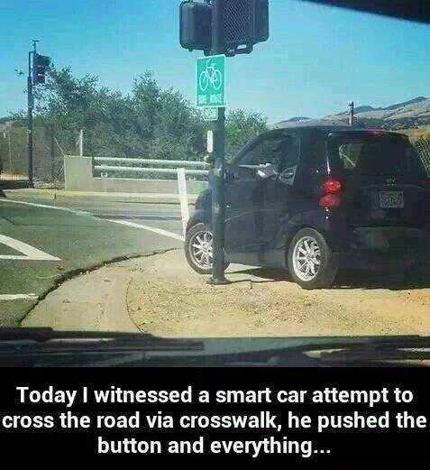 I witnessed a smart car attempt to cross the road via crosswalk