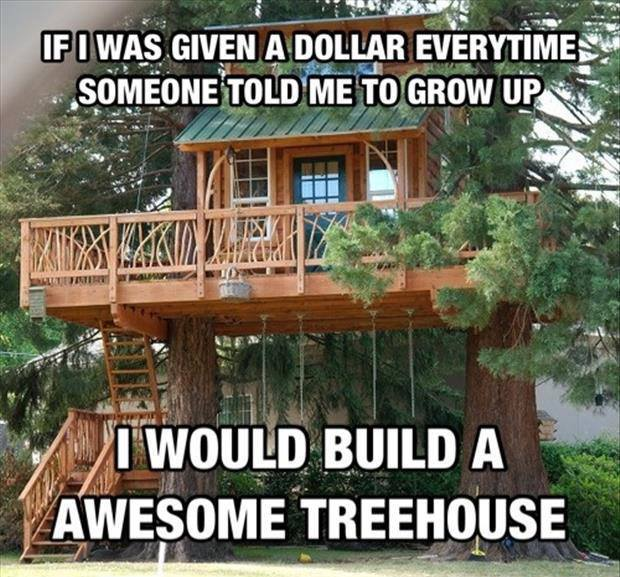If I was given a dollar every time someone told me to grow up I would build a awesome treehouse