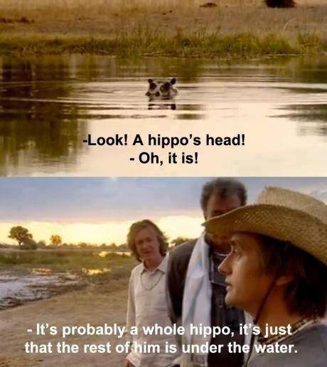 Look! A hipoi's head! Top Gear moment