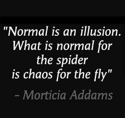 Mortica Addams - Normal is an illusion. What is normal for the spider is chaos for the fly