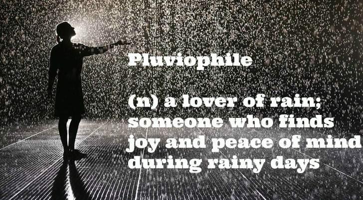 Pluviophile - Rain lover
