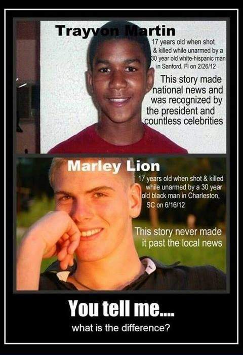 Trayvon Martin and Marley Lion - What is the difference ?