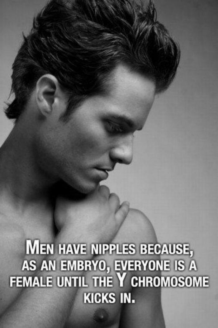 Men have nipples because ...