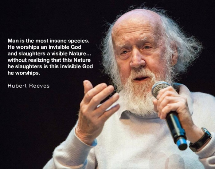 Hubert Reeves Quote - Man is the most insane species.