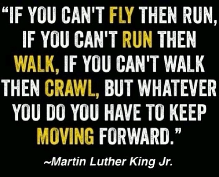 Martin Luther King Jr. - Fly Run Walk Crawl Move Quote