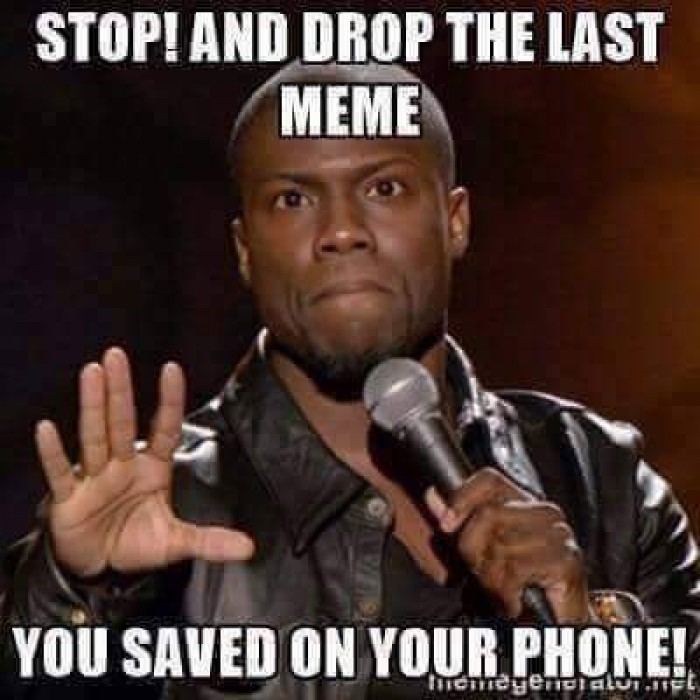 Stop! And drop the last MEME...