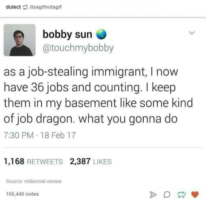 Job Stealing Immigrant
