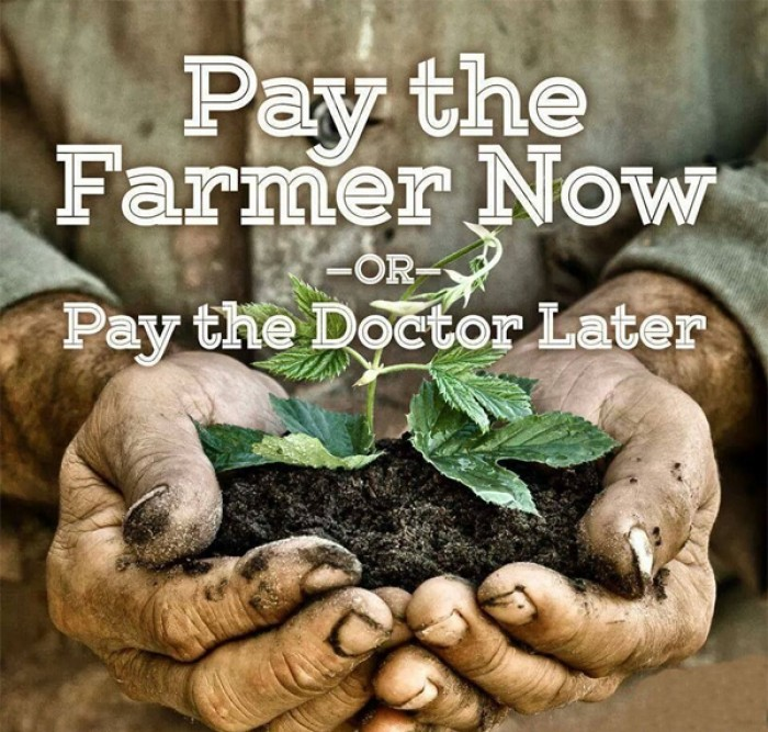 Jordan Rubin - Pay the farmer now or pay the doctor later.