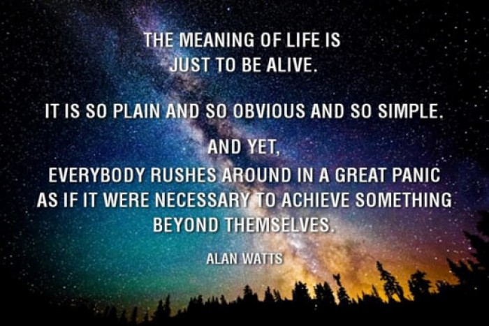 Meaning Of Life Quotes Simple The Meaning Of Life Is Jut To Be Alive. Alan Watts Quote  9Buz
