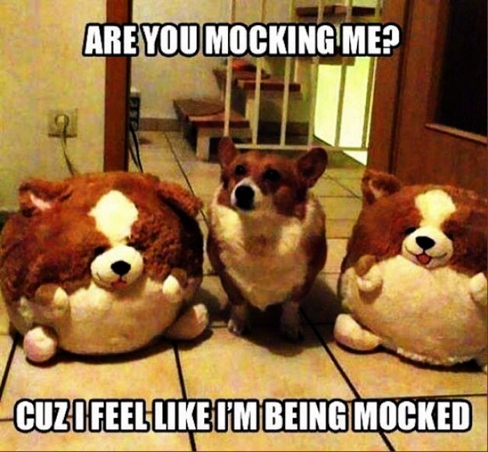 You mocking me