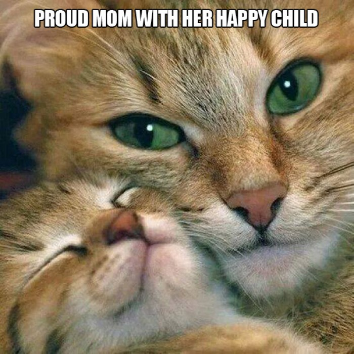 Proud Mom with her happy Child
