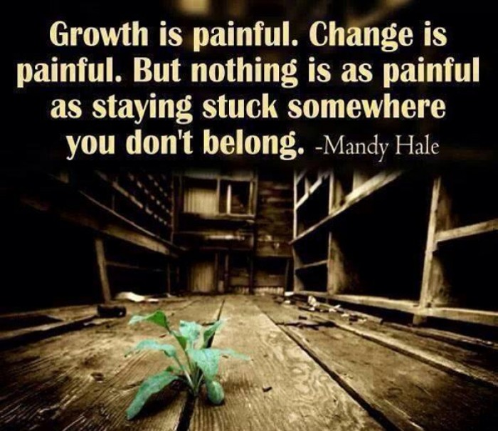 Quotes About Change And Growth: Growth Is Painful. Change Is Painful. But