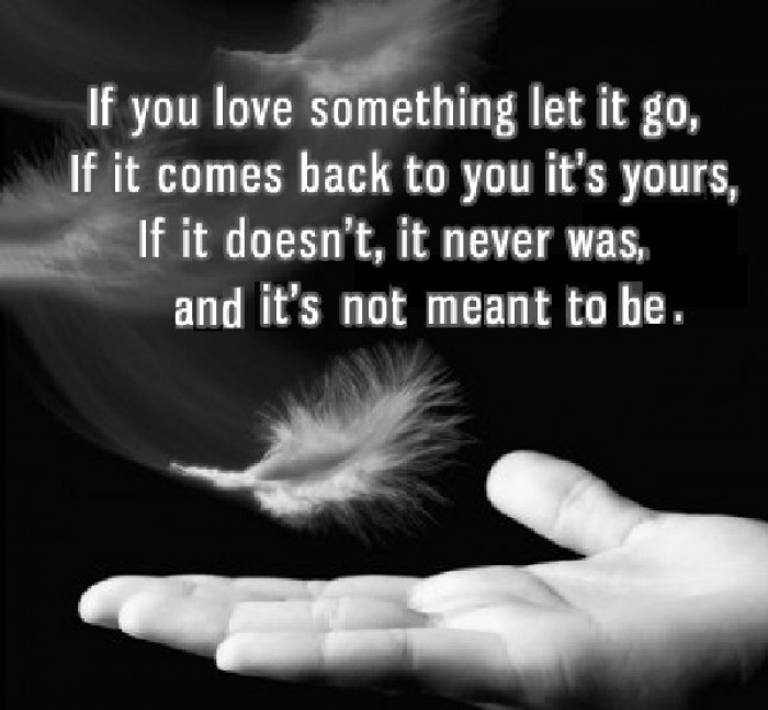 Sherrilyn Kenyon  - If you love something, let it go. If it comes back...