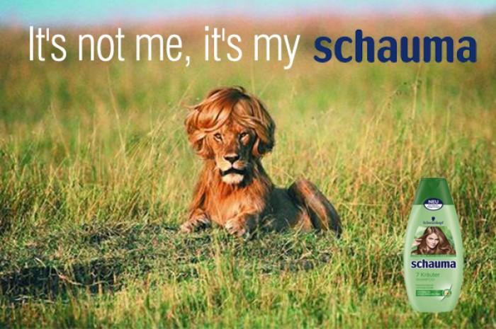 It's not me, it's my Schauma