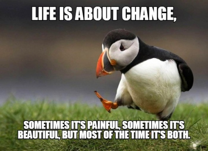 Unpopular Opinion Puffin - Life is about change, sometimes it's painful...