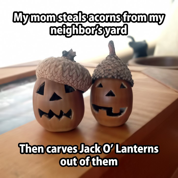 My mom steals acorns from my neighbor's yard and then carves jack'o lanterns out of them.