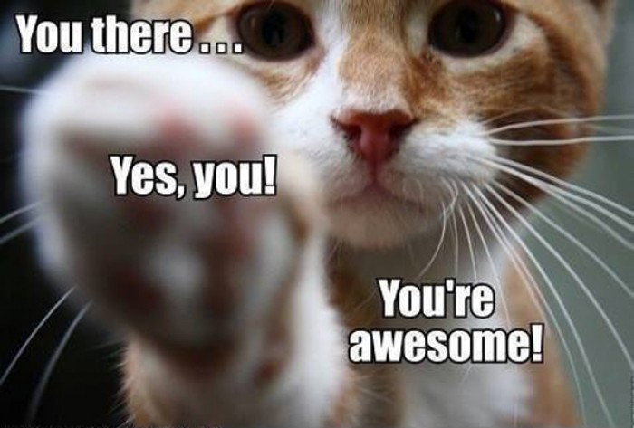 You there. Yes you! You're awesome!