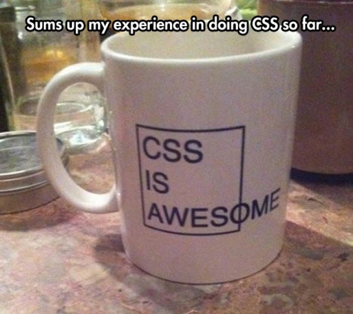 CSS is awesome funny mug