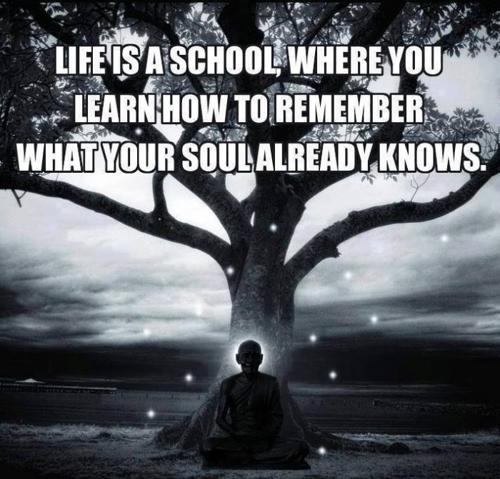 Life is a school, where you learn how to...