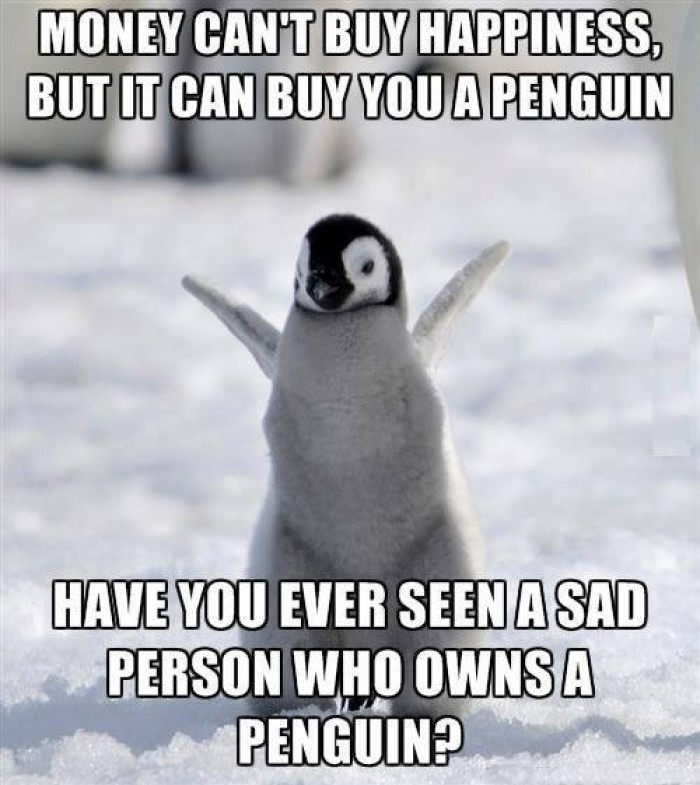 Money can't buy happiness, but it can buy you a penguin...