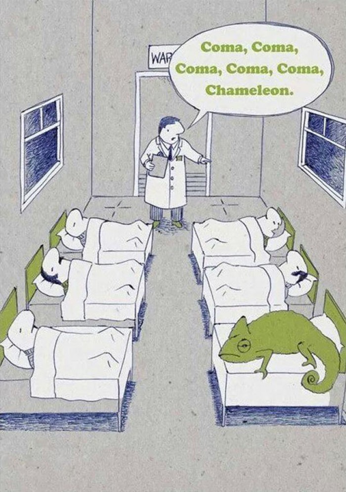 Hospital Coma Department - Coma, Chameleon