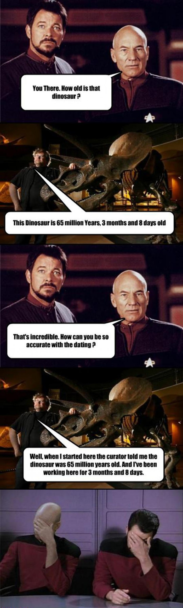 How Old Is That Dinosaur?