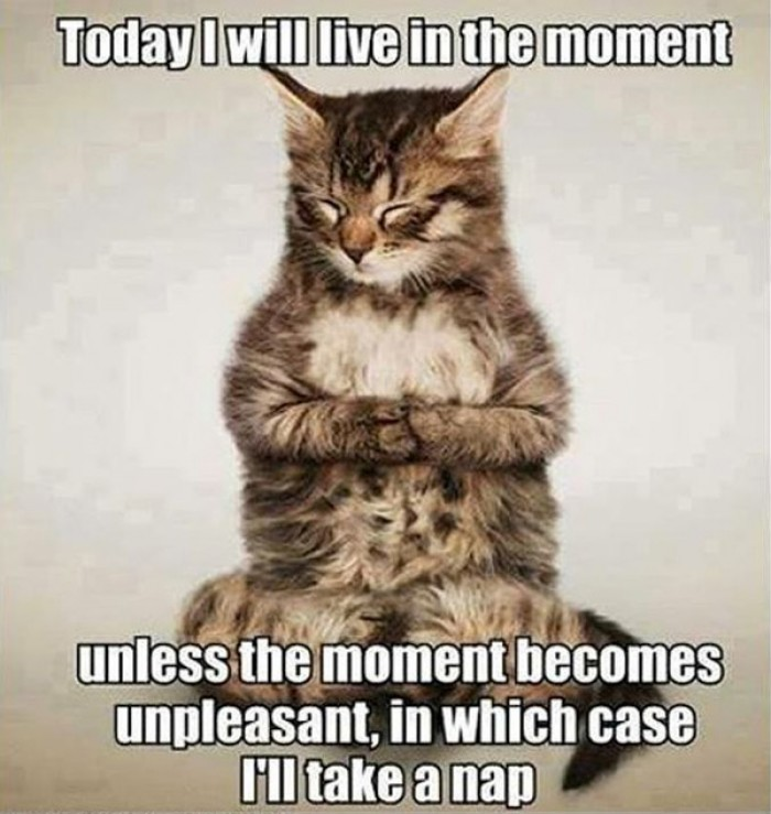 Today I will live in the moment unless the moment becomes unpleasant...
