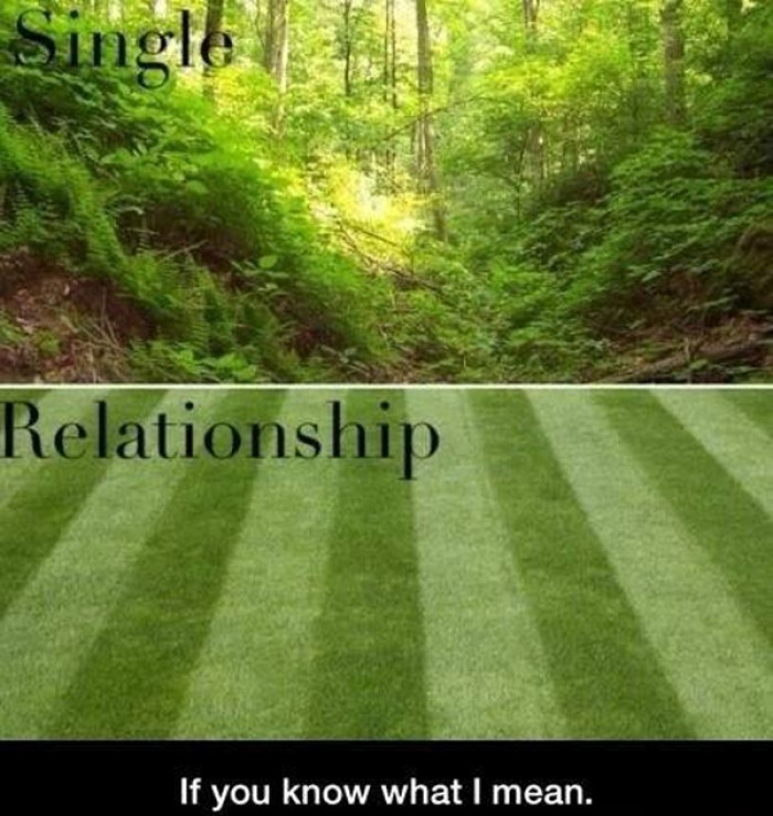 Relationship vs. single.  You know what I mean!