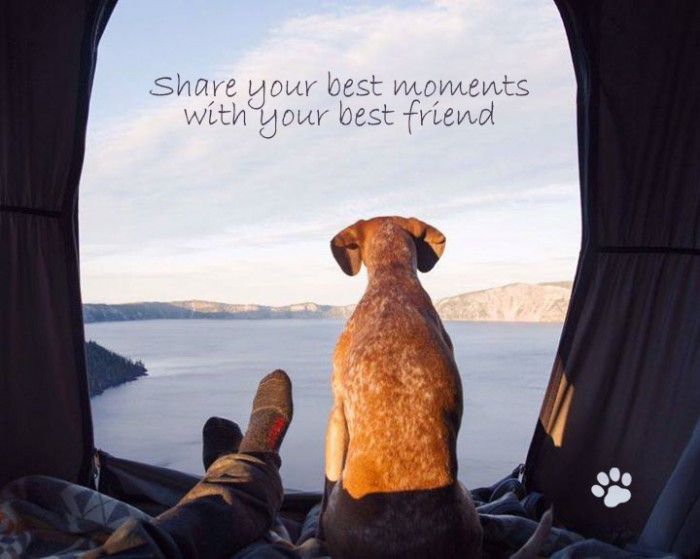 Share your best moments with your best friend