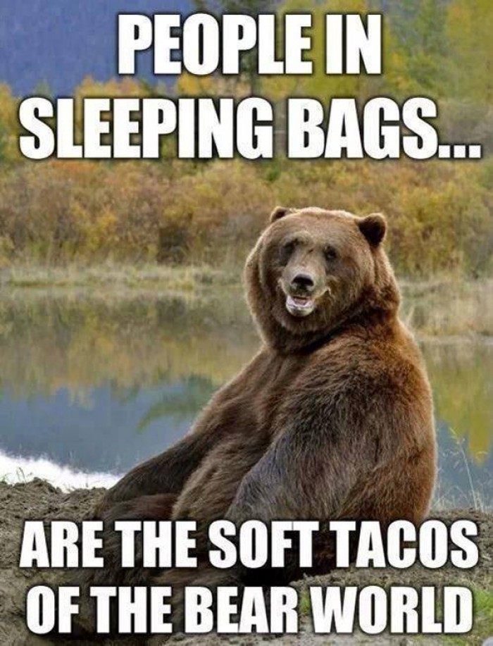 People in sleeping bags are the soft tacos of the bear world
