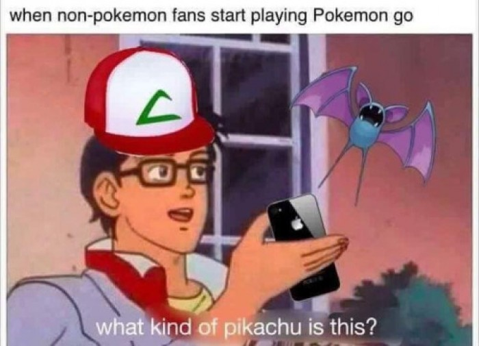 When non-pokemon fans start playing Pokemon go...