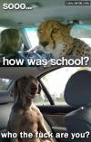 Gepard and Dog In Car - Sooo.. how was school? Who the fuck are you ?