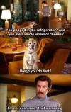 Will Ferrell and pooping dog
