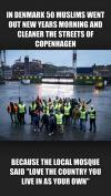 In Denmark 50 Muslims went out New Years morning and cleaner the streets of Copenhagen