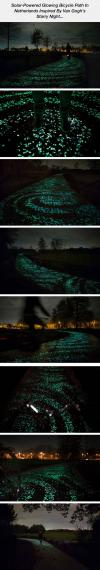Beautiful Glowing Bicycle Path In Netherlands